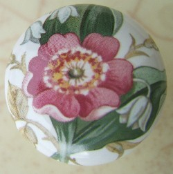 Cabinet Knob May Flower pulls