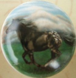 Cabinet knobs horse horses images