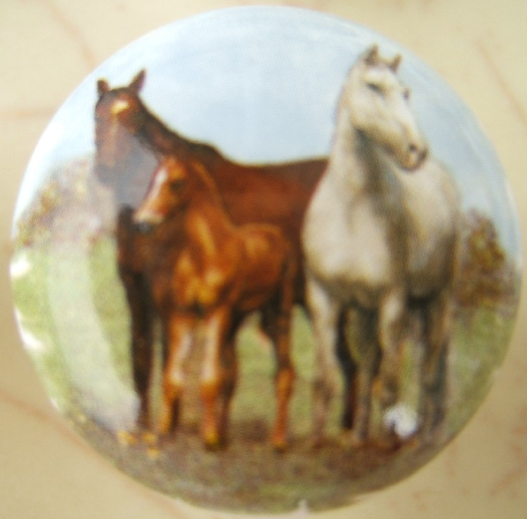 Cabinet Knobs Horse Family #2 $3.60