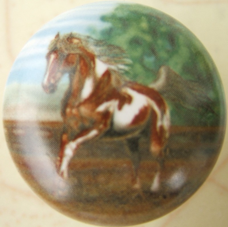 Great Cabinet Knobs Indian Paint Horse $3.40