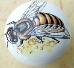 cabinet knobs insect images bee butterfly dragon fly